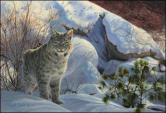 Linda Rossin Wildlife Artist News